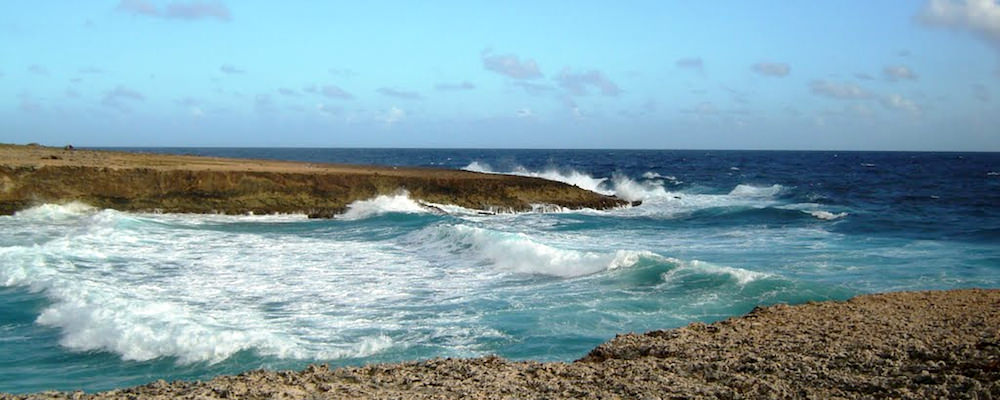 a picture of daimari beach aruba