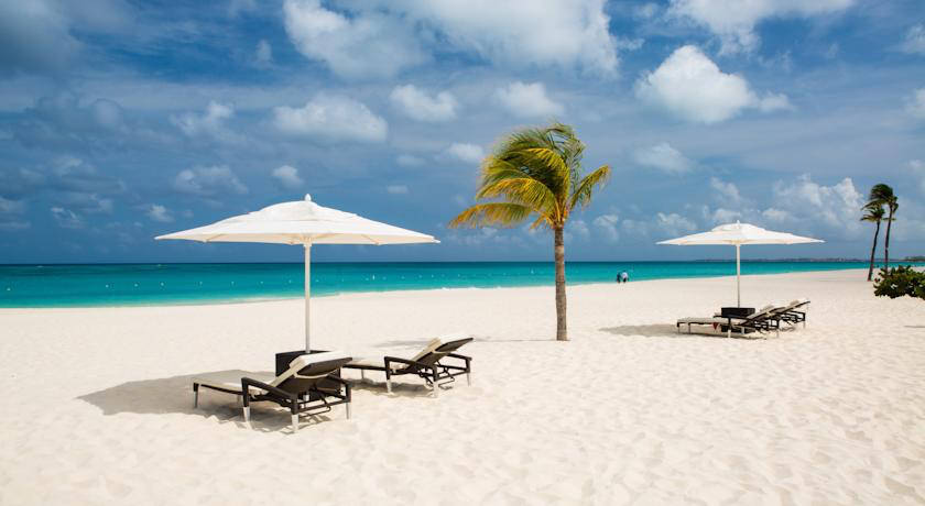a picture of the beach at bucuti and tara beach resort aruba where you can stay when you visit Aruba