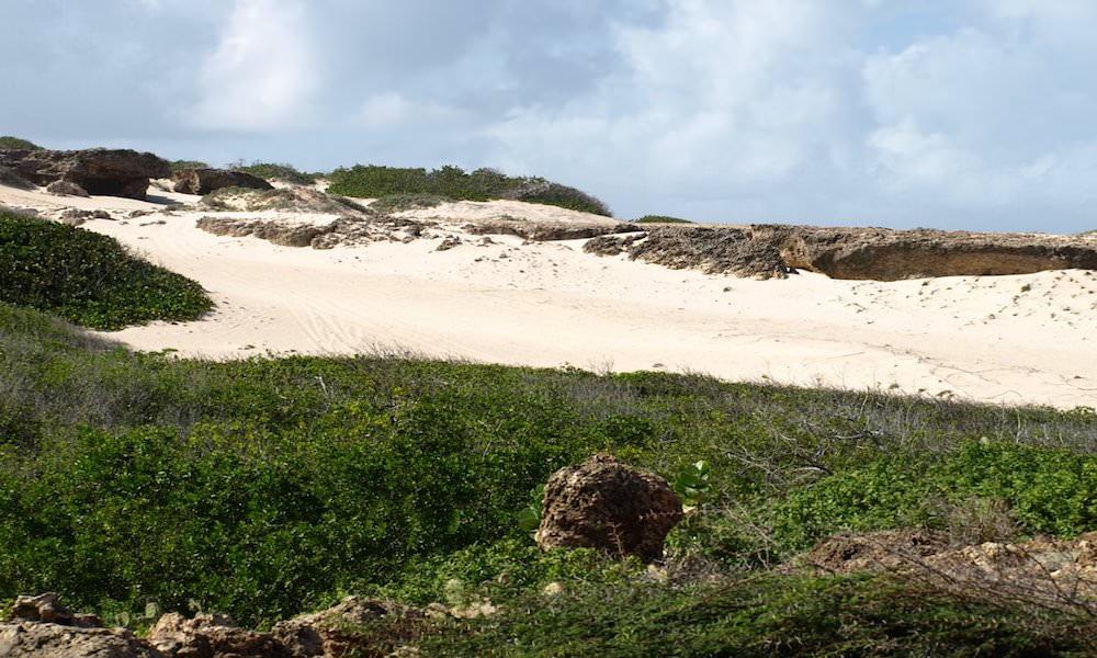 the dunes of boca prins