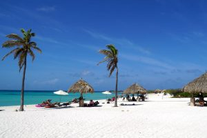 white sands with palm trees on Arashi Beach in Aruba, in the Dutch Caribbean.