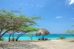Picture-perfect scenery at Mangel Halto Beach, Aruba, Dutch Caribbean.